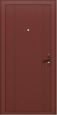 Титан Металлическая дверь Out 101 Металл с декором / Металл с декором